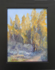 Southern Arizona in October oil canvas 9x12 frame 12x15 $90